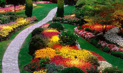 Phoenix Landscape Design Services - Landscape Design Phoenix, AZ - Arbor Tree Care